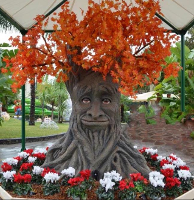 albero-parlante-fedro